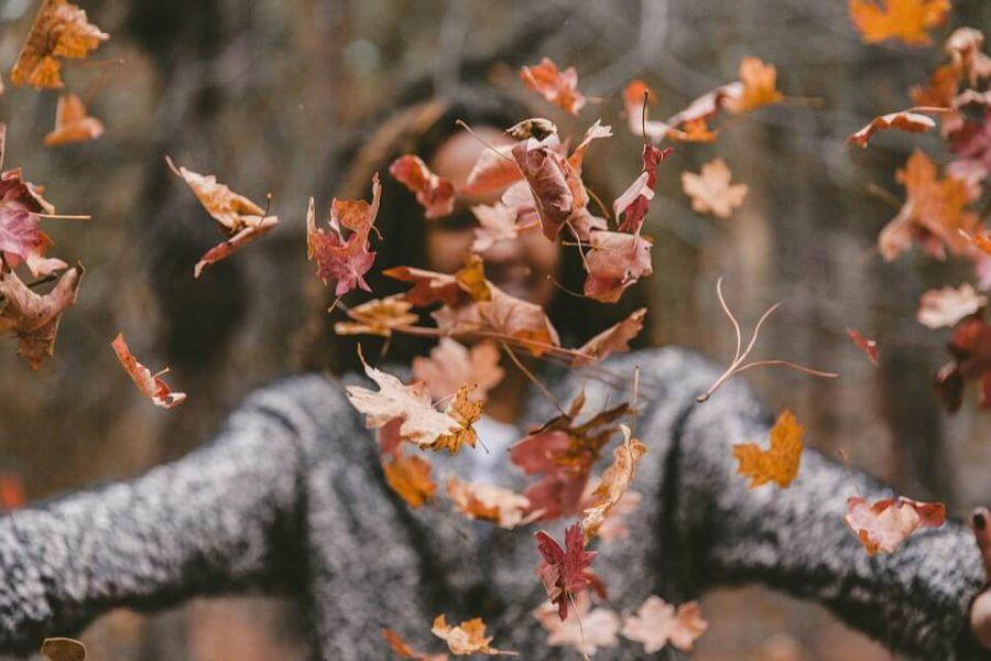Dlaczego warto być wdzięcznym? Listopadowe refleksje