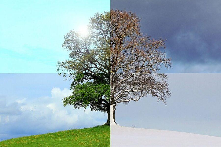 Jedyna pewna w życiu, to zmiana. Jak sobie radzić ze zmianami?